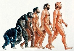 The evolution of man's thought